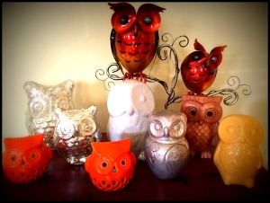 owlcollection