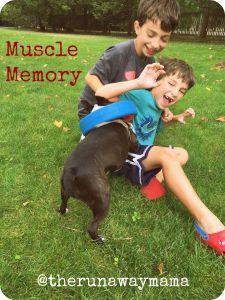 musclememoryfinal