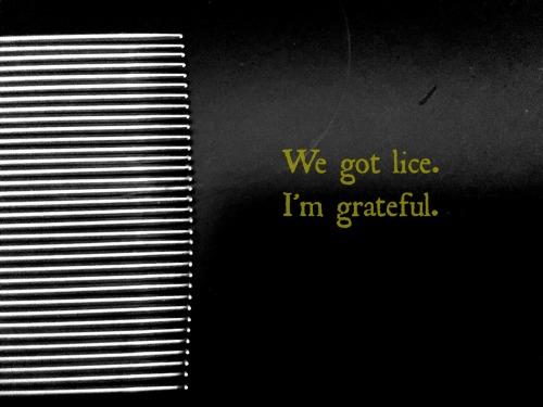 lice_grateful