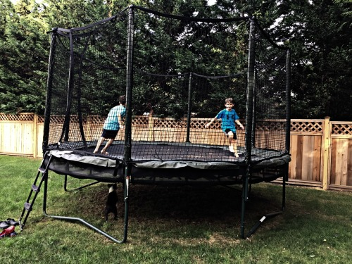 trampolinefinal
